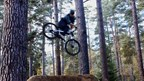 Pro MTB Rider Linus Sjöholm Up a Tree on Home Turf | 100% Linus, Ep. 4