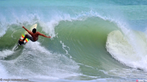 Taylor Steele's Innersection, Peace And Left and The Latest Swell