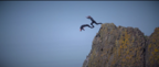 Coalder | Cliff Jumping Video | North Coast, Northern Ireland