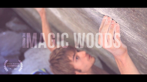 Magic Woods: The Process