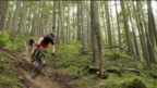 Devinci - Steve Smith, Mark Wallace and the Troy