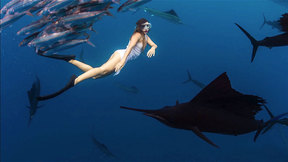 Roberta Mancino diving with sailfish